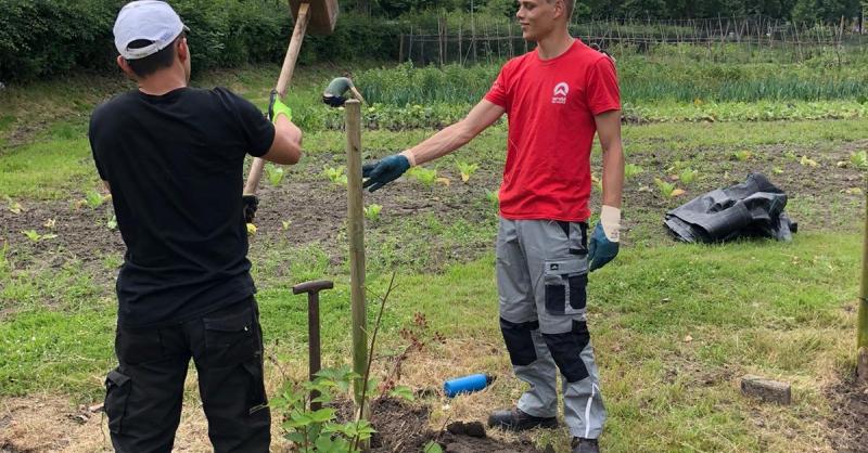 Werk in de tuin
