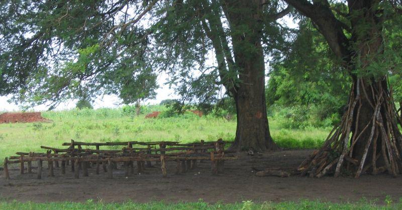 Naar school onder de boom