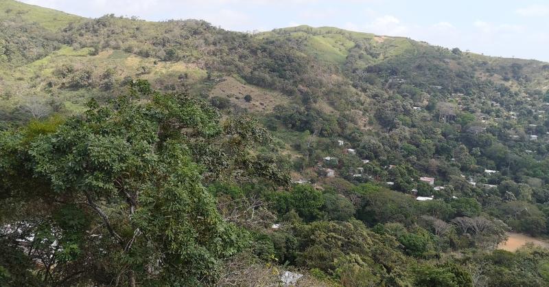 View from Cerro Cabra