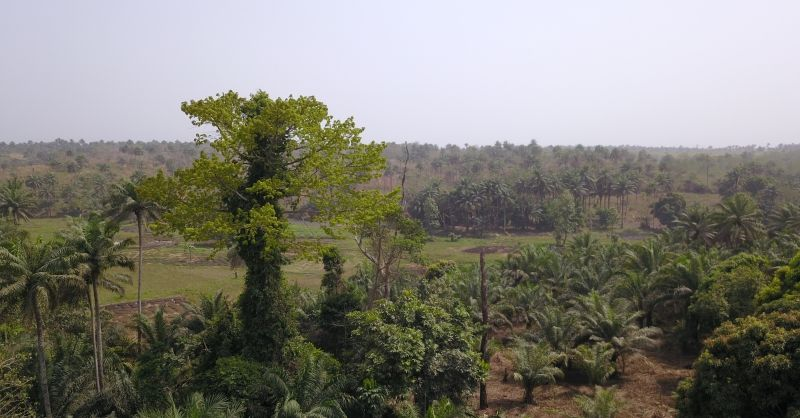 Luchtfoto van de bouwplaats in Barmoi Luma