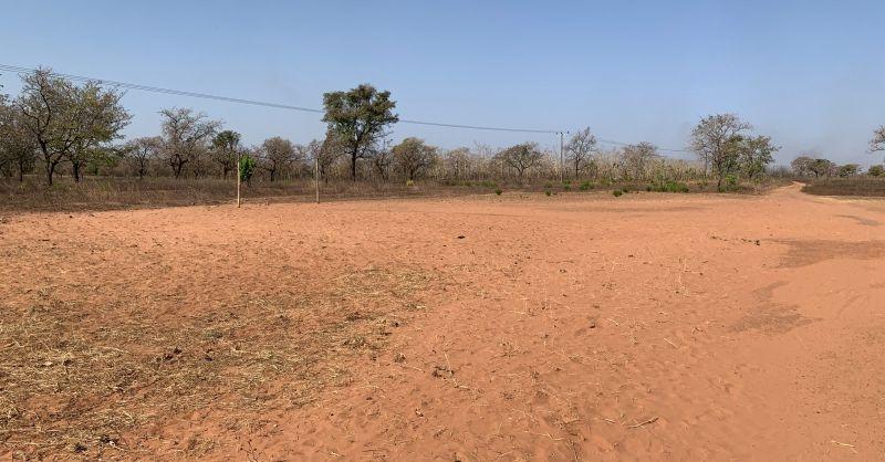 Noordwesthoek schoolterrein met voetbaldoel
