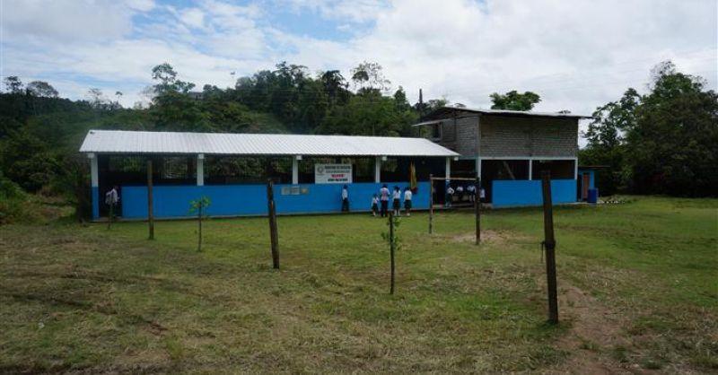 De school in zijn geheel