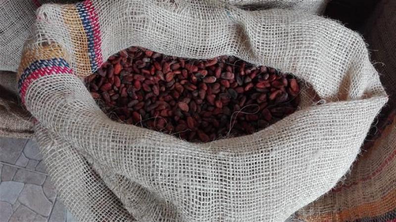 Zak cacao gereed voor de verkoop