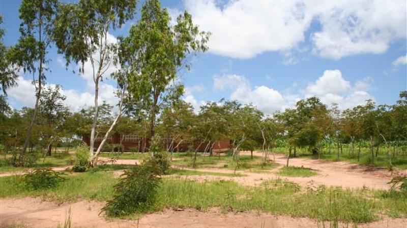 School terrein met school op de achtergrond