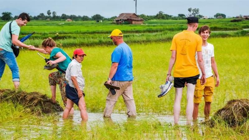 Rijstveld oversteken