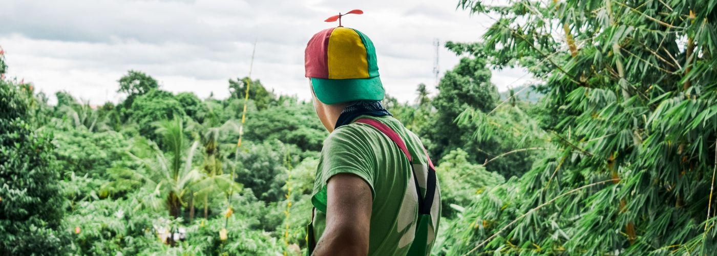 Uitkijken over het groene landschap