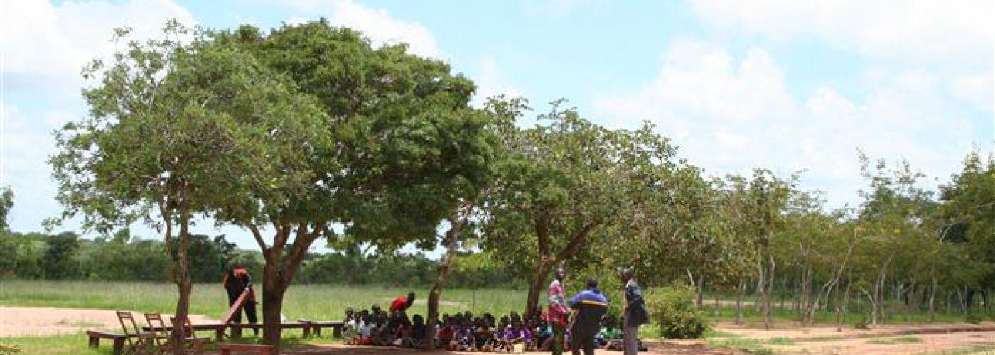 Ontmoeting met de gemeenschap onder de boom