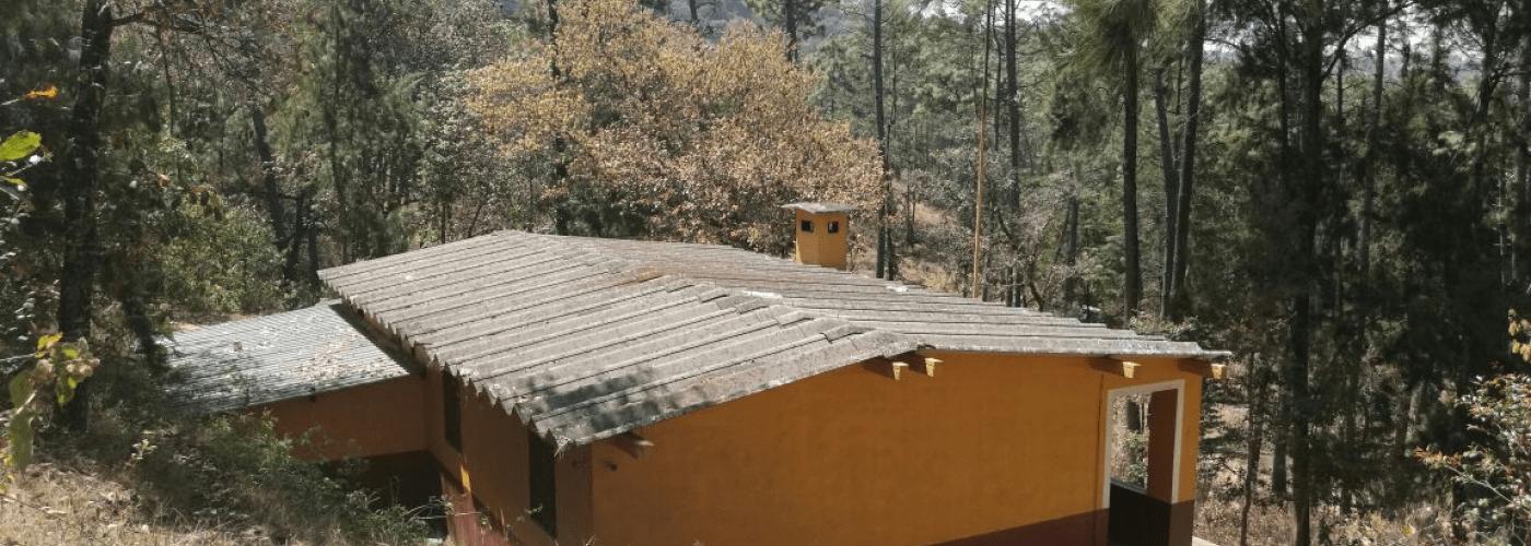 Komende zomer ga je hier het dak op!