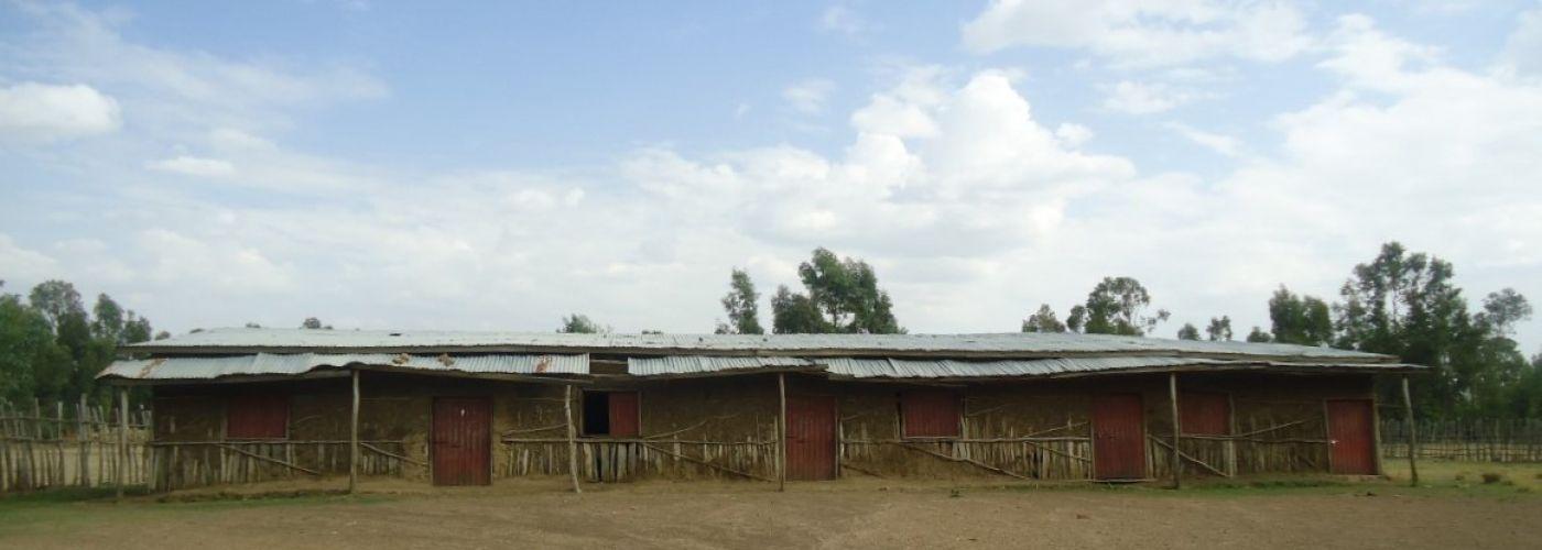 De voormalige klaslokalen